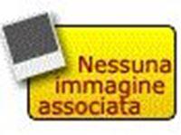 Immagine di Batteria LIPO 1500 Mah 11.1 Volt 3S 20C con connettore