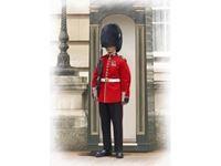 Immagine di 1:16 British Queen?s Guards Grenadier (100% new molds)