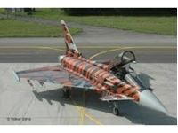 "Immagine di 1:48 Eurofighter ""Bronze Tiger"