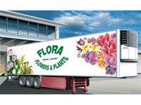 Picture of Italeri - 1/24 REEFER TRAILER  FLORA 3813