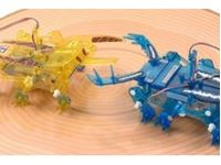 Picture of RC Insect Battle Set 2ch