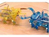 Immagine di RC Insect Battle Set 2ch