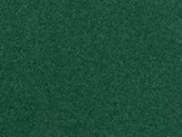Immagine di Noch -Erba verde scuro 2.5 mm
