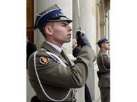 Immagine di 1:16 Polish Regiment Representative Officer (100% new molds)