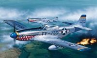 Picture of 1/72 F-51D MUSTANG