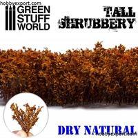 Immagine di GSW   Tall Shrubbery Dry Natural
